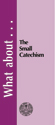What about the Small Catechism?  - Tract (pack of 25)