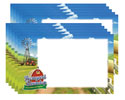 "Name Tags, 4"" x 2.5"" (Sheet of 10) - VBS 2016"