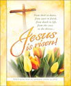 Premium Easter Bulletin: Jesus is Risen, Yellow Tulips