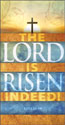 Easter Offering Envelope: Lord Is Risen