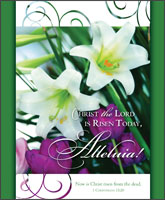 Premium Easter Bulletin: Christ the Lord is Risen Today Alleluia